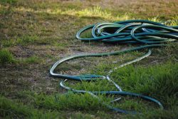 hose-pipe